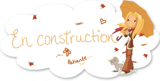 en-construction-copie.png